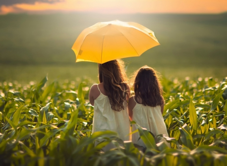 ♥ - splendor, children, umbrella, sisters, nature, sunset, girls, field