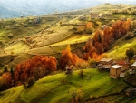Tuscan Hills in Autumn