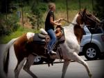Country Girl On Horseback