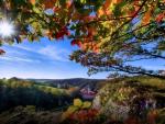 Fall in Europe