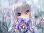 Soft Neko