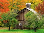 Wooden cottage in autumn mountain