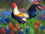 ★The Lovely Rooster★