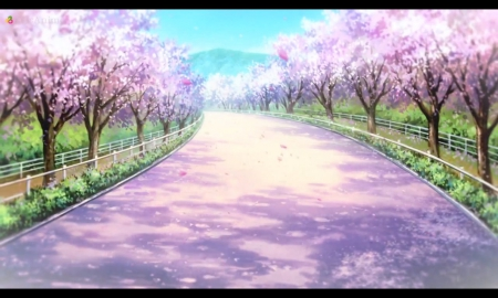 C Blossom Path Other Anime Background Wallpapers On Desktop
