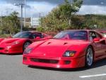 Ferrari F40, Ferrari F50