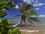 Stormy Weather on Hawaiian Beach