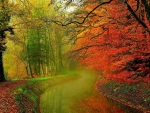 Canal in Autumn Forest