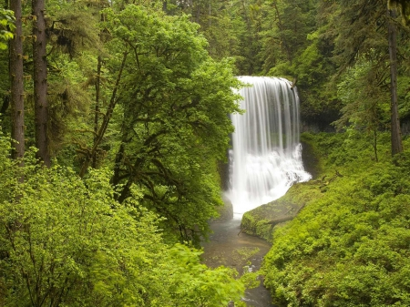 silver falls state park - park, state, silver, falls