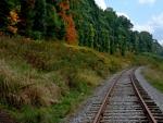 Autumn Rail