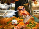 ★Playing in the Leaves★