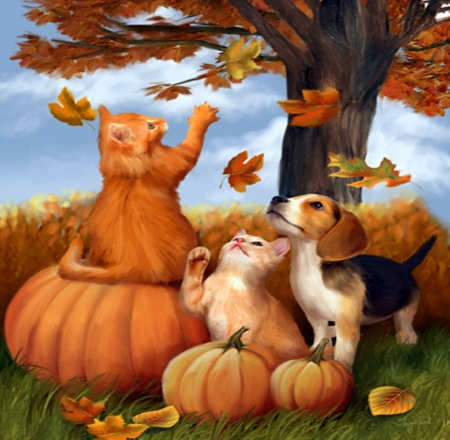 ★Fun in Fall★ - pretty, autumn, leaves, paintings, puppies, fall season, lovely, colors, love four seasons, kittens, fun, creative pre-made, cute, nature, cats, pumpkins, dogs
