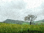 Raindroplets countryside