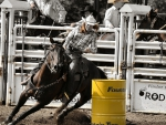 Cowgirl Barrel Racing