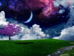 Spacescape Over Meadow
