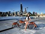 2006-Harley-Davidson-Fat-Boy