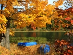 Boats by Autumn Lake