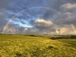 * Rainbow *