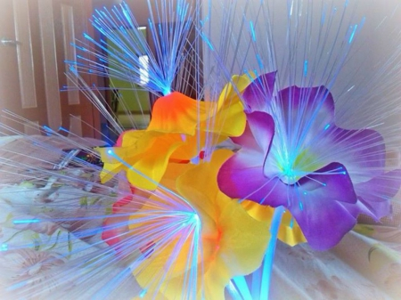 flower lamp - lamp, photography, lighting, flower, abstract