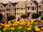 San Francisco Houses (The Six Sisters)