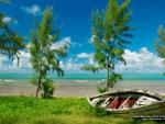 Beach in Mauritius, Africa