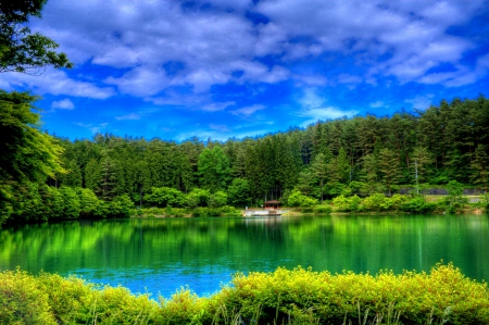 GREEN RIVER in HDR - Rivers & Nature Background Wallpapers on ...