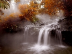 AUTUMN FOREST FALLS