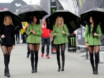 Monster Energy Umbrella Girls