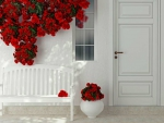 White Wall and Bench