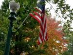 Autumn Patriot
