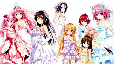 To Love Ru Girls Other Anime Background Wallpapers On