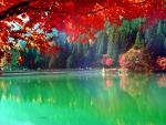 ★Autumn Lake in Japan★