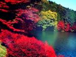 ★Autumn Lake - Japan★