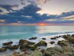 Gulf of Mexico Beach in Venice, Florida