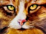 Amber Eyes Sweet Kitty F