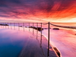 Magnificent Beach Sunset