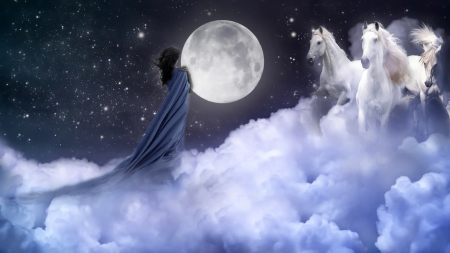 I saw a dream.... - stars, dress, time, long, dreams, sky, woman, clouds, fullmoon, horses, brunette, moon, dreamer, white, blue, night