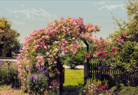 A beautiful garden entrance - grass, flowers, garden, roses, trees, wooden fence, entrance