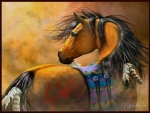Native American Pony - Horse F1