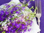 Flowers in Plate