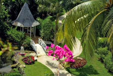 Georgeus garden - flowers, grass, garden, palms