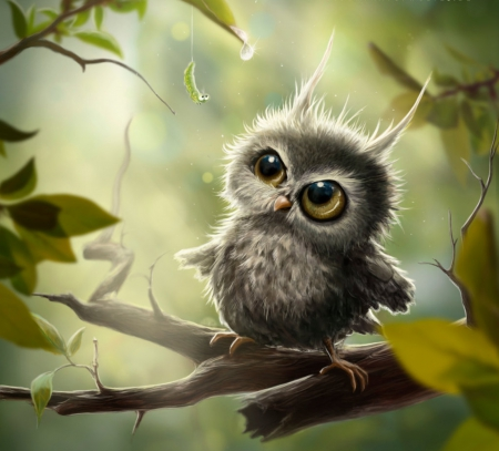 owlet and the caterpillar other abstract background wallpapers