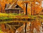 Hut in autumn forest
