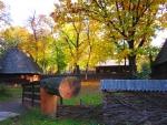 Autumn Village Museum