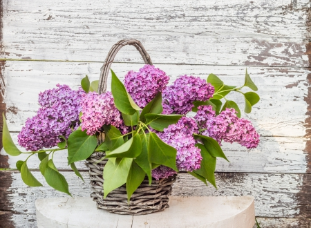 Lilac In Basket - lilac, table, still life, wooden background, basket, wicker