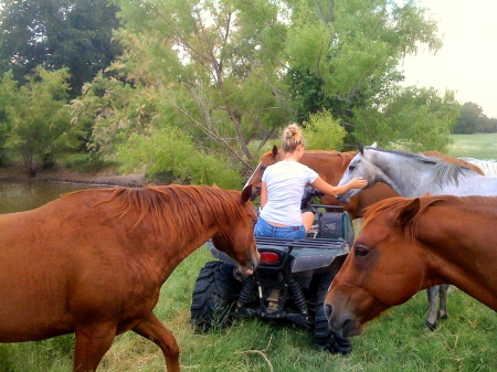 Modern Cowgirl - female, ranch, atv, fun, trees, lake, horses, cowgirls, four wheeler, blondes, style