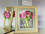 Flowers and Frame