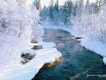 Winter River in Sweden