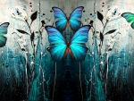 blue butterfly by zyn