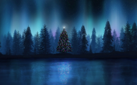 Christmas Forest.Christmas Tree In The Forest 3d And Cg Abstract