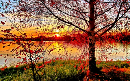 SUNSET on the RIVER in AUTUMN - Sunsets & Nature Background Wallpapers on  Desktop Nexus (Image 1865475)